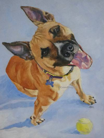 Rudy, commissioned oil on canvas
